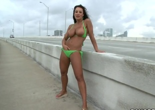 Another fantastic Lisa Ann porn scene